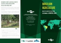 Thumbnail de BRAZILIAN agriculture: one of the most efficient and sustainable in tropical zones.
