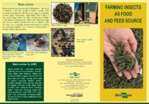 Thumbnail de Farming insects as food and feed source.