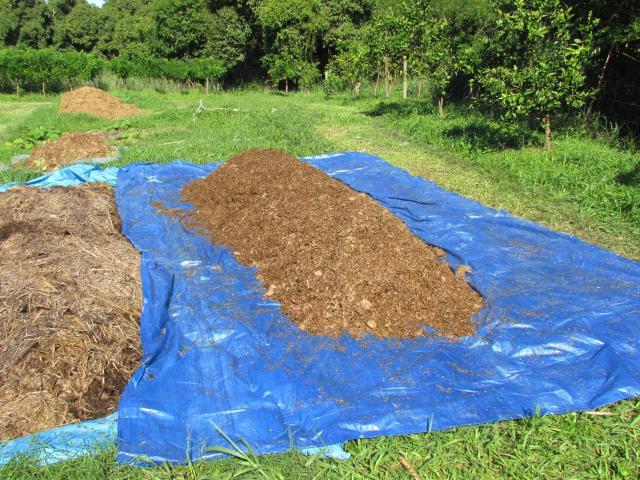 Adubo e substrato orgânico de origem 100% vegetal - Portal
