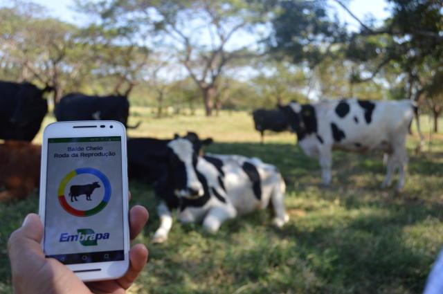 Resultado de imagem para App gratuito monitora crescimento e reprodução do rebanho leiteiro