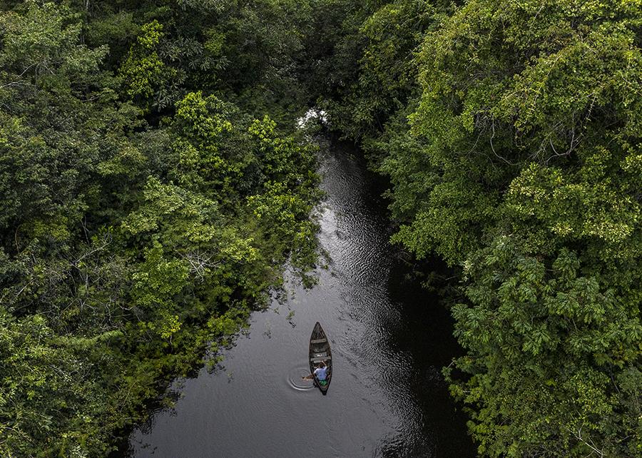 rio amazônico