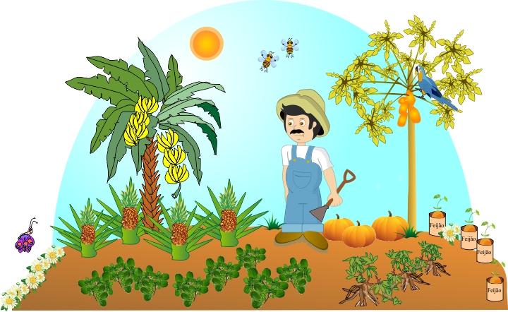 Cenário para o tema Cultivos: agricultor José cultivando frutas e hortaliças.