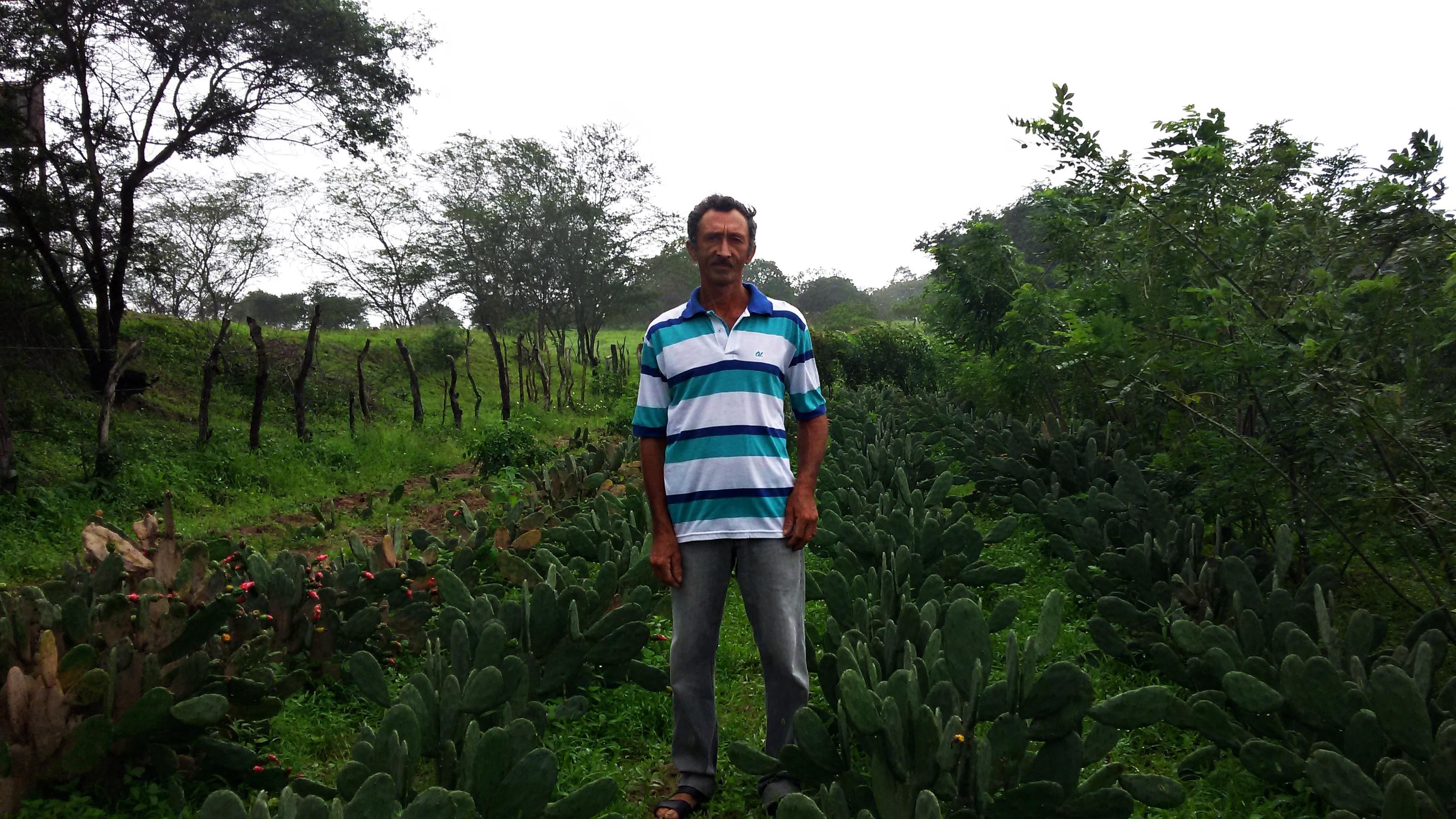 O Prosa Rural chega a milhares de ouvintes do Brasil, inclusive para Manoel Rogério dos santos, morador da zona rural de Igaci, em Alagoas.Foto: Maria Clara Guaraldo