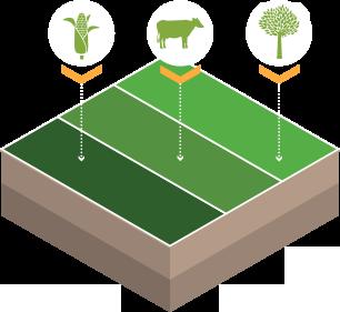 Santa Fa 2019 >> ILPF - Integração lavoura-pecuária-floresta - Portal Embrapa