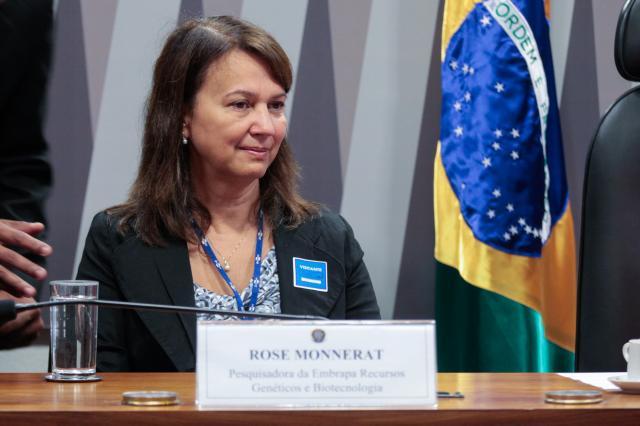Luis Carlos Campos Sales - Pesquisadora Rose Monnerat defende o manejo integrado contra o mosquito Aedes aegypti