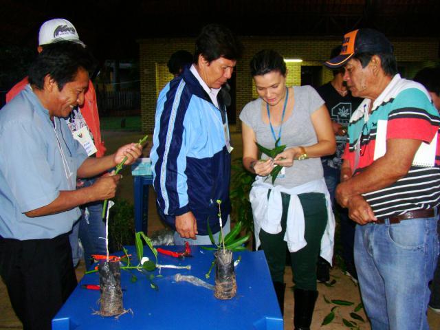 Ana Maio - Oficina mostra como fazer enxertia durante o evento