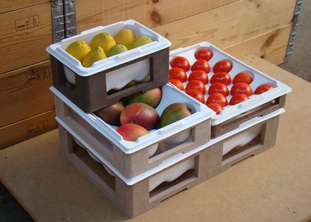 Instituto Nacional de Tecnologia - INT - Com nichos do formato do conteúdo, embalagens protegem frutas de choques