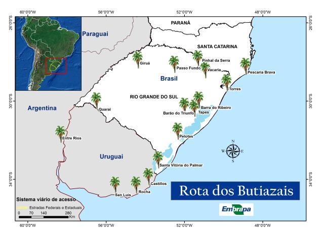 Divulgação - A Rota dos Butiazais propõe o envolvimento de 16 municípios, integrando os Estados do Rio Grande do Sul e Santa Catarina, além de cidades vizinhas do Uruguai e da Argentina.