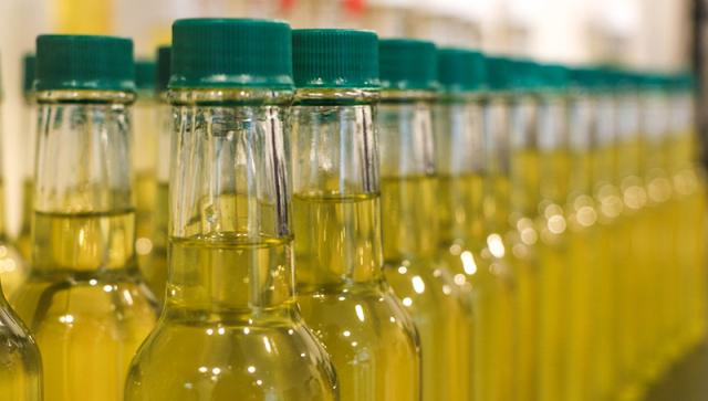 DICTA - Atualmente, a extração de óleo de gergelim está em fase de validação junto aos produtores