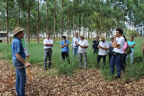 Resultado de imagem para Dia de campo terá espaço para fruticultura, extrativismo de castanha e meliponicultura