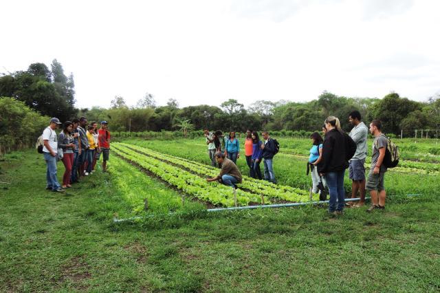 Liliane Bello - Estudantes de diversas instituições de ensino superior visitaram a Fazendinha entre agosto e outubro deste ano