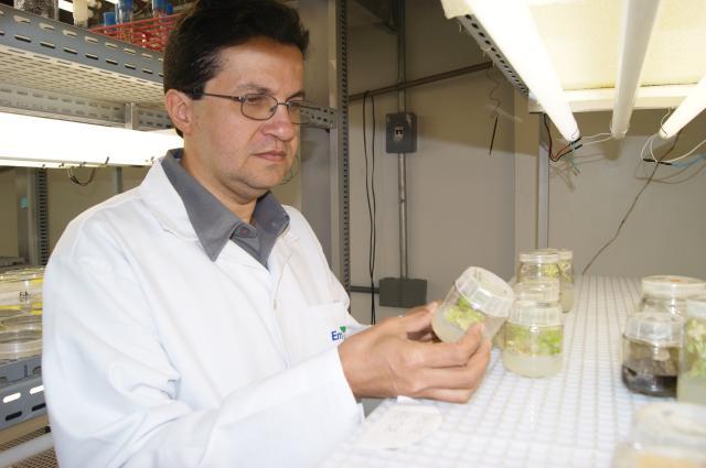 Claudio Bezerra - Francisco Aragão é o mais novo membro tutular da Academia Brasileira de Ciências (ABC)