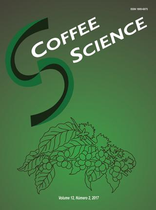 Consórcio Pesquisa Café divulga resultados de pesquisas que avaliam perfis sensoriais de cultivares de café