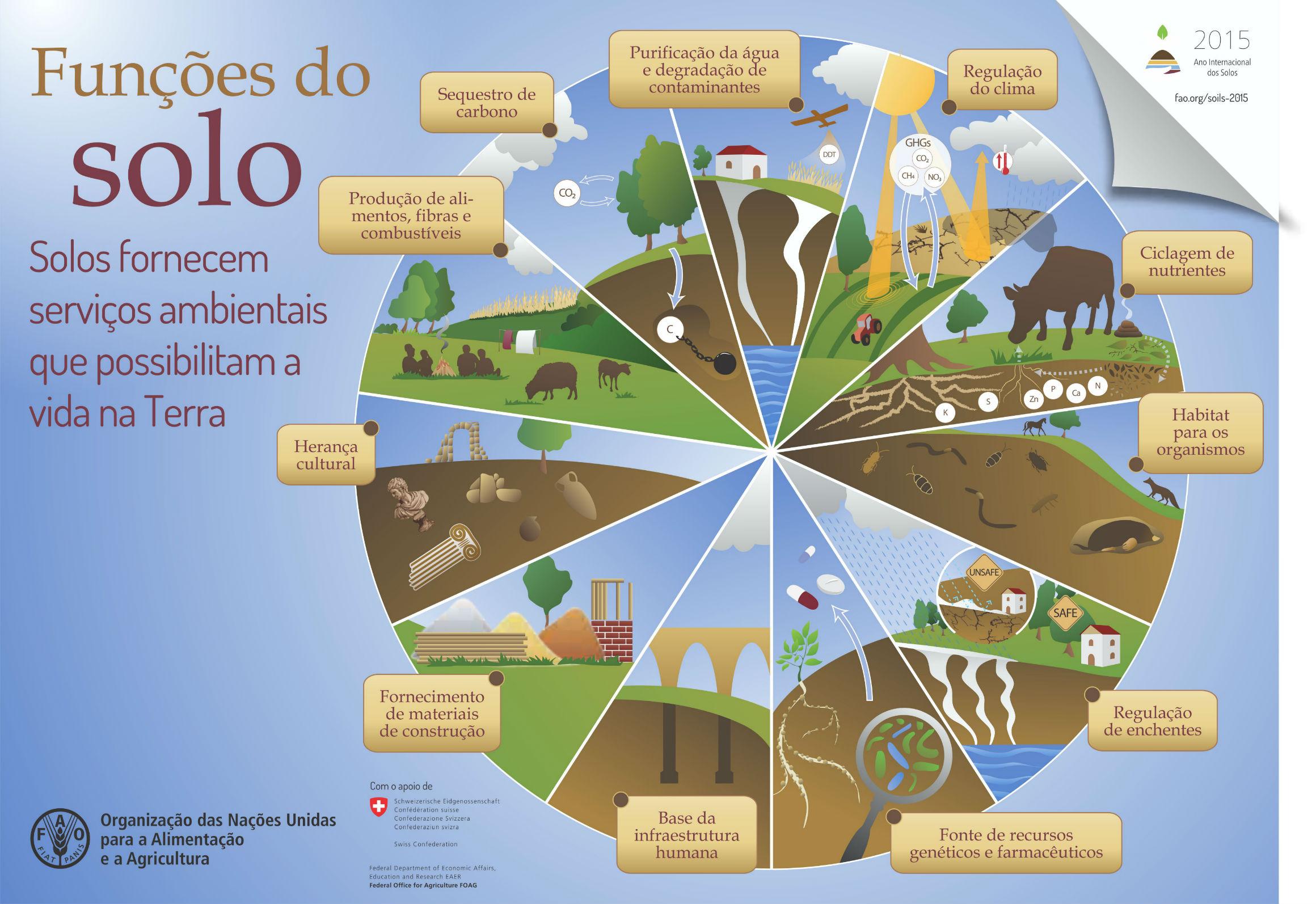 FAO - Esquema mostra as funções do solo