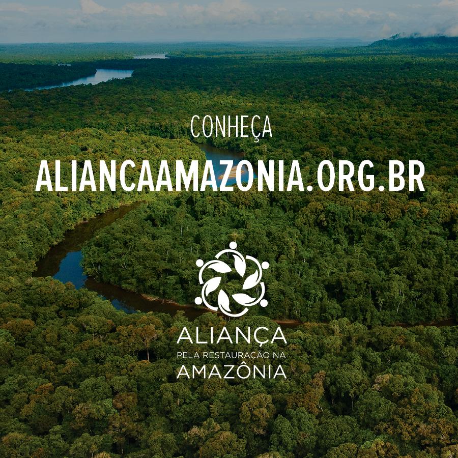 Divulgação - Aliança reúne diversos atores por uma agenda positiva para a restauração na Amazônia