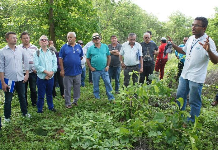 Adilson Nóbrega - Éden Fernandes (direita) apresenta aos técnicos área do Sistema Agrossilvipastoril na Embrapa