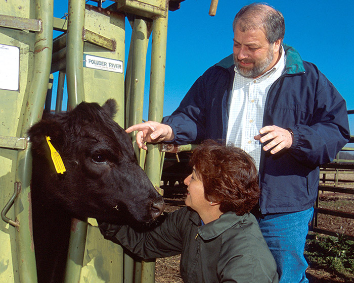 Animal health - Integrated Animal Disease Control 1998-2002