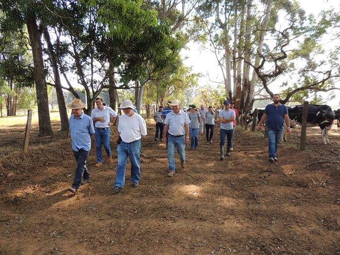 Ana Maio - Equipe caminha por corredor que será abaulado em São Gonçalo de Sapucaí