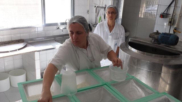André Dutra - A proprietária Patrícia Tiedeman observada pela pesquisadora Karina dos Santos
