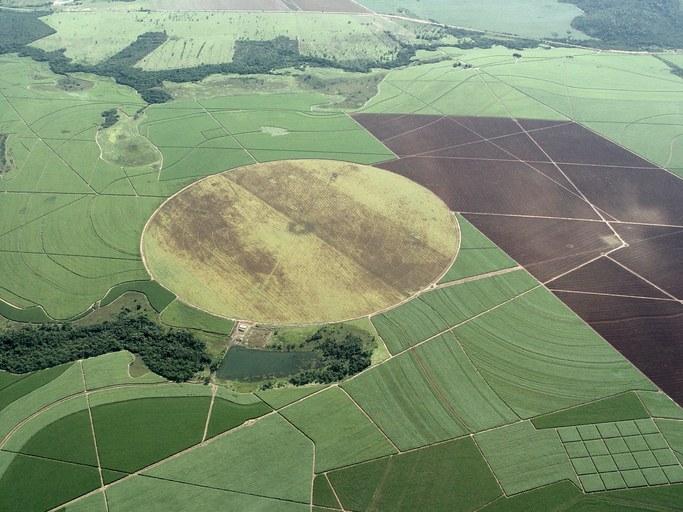 NASA confirma dados da Embrapa sobre área plantada no Brasil