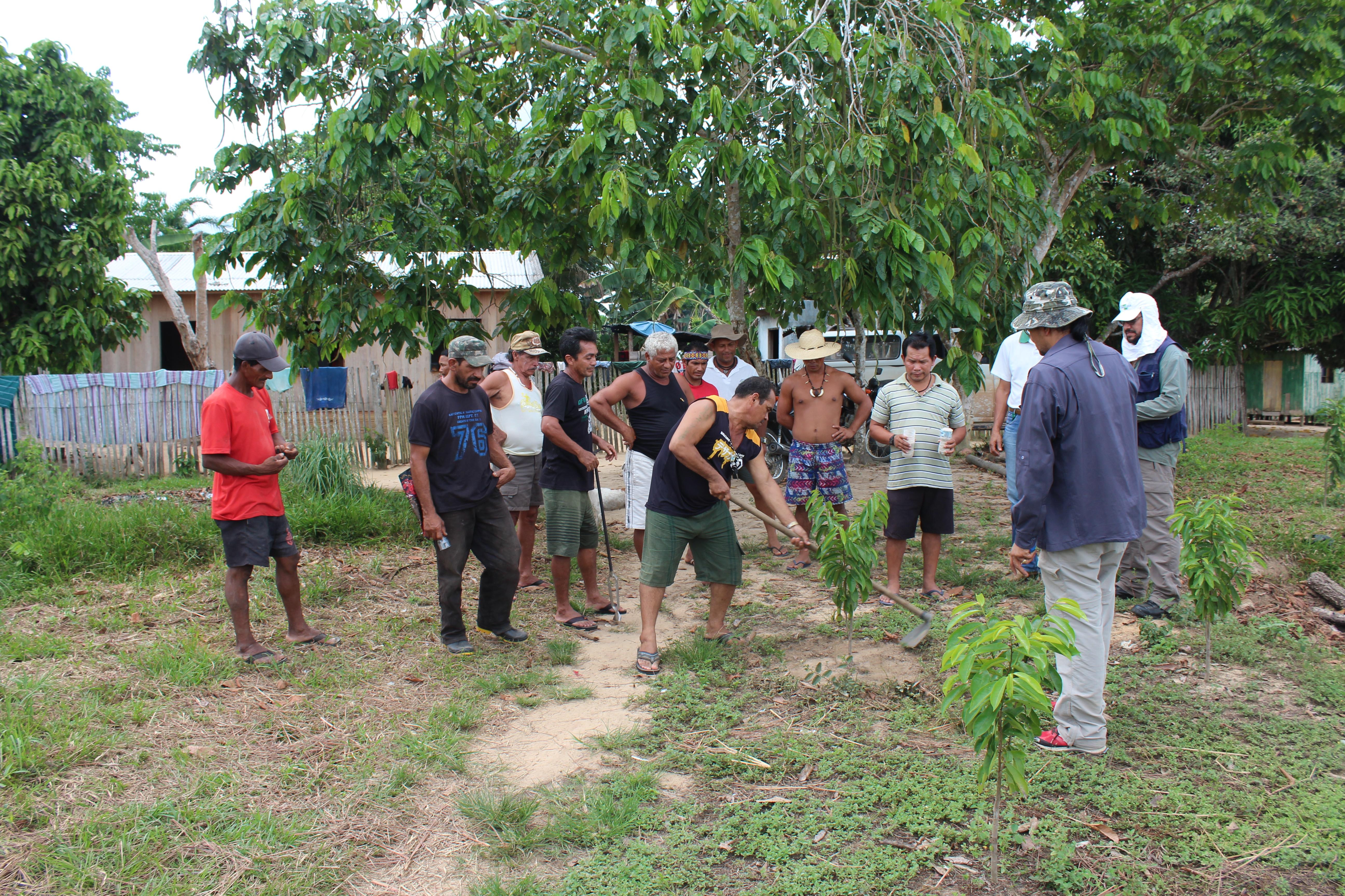 Moacir Haverroth - Moradores da Terra Indígena Poyanawa e pesquisadores do projeto em atividade de campo