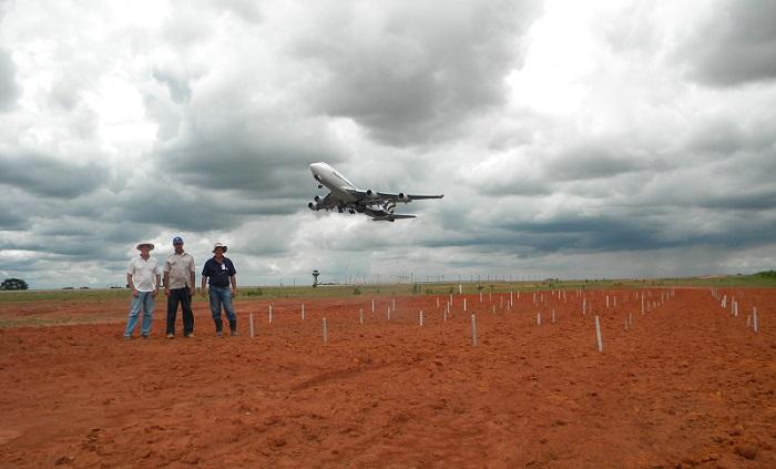 Tiago Porto Aranha - Francisco Dübbern (à esq.) tem estudado a cobertura vegetal em áreas próximas a pistas de aeroportos