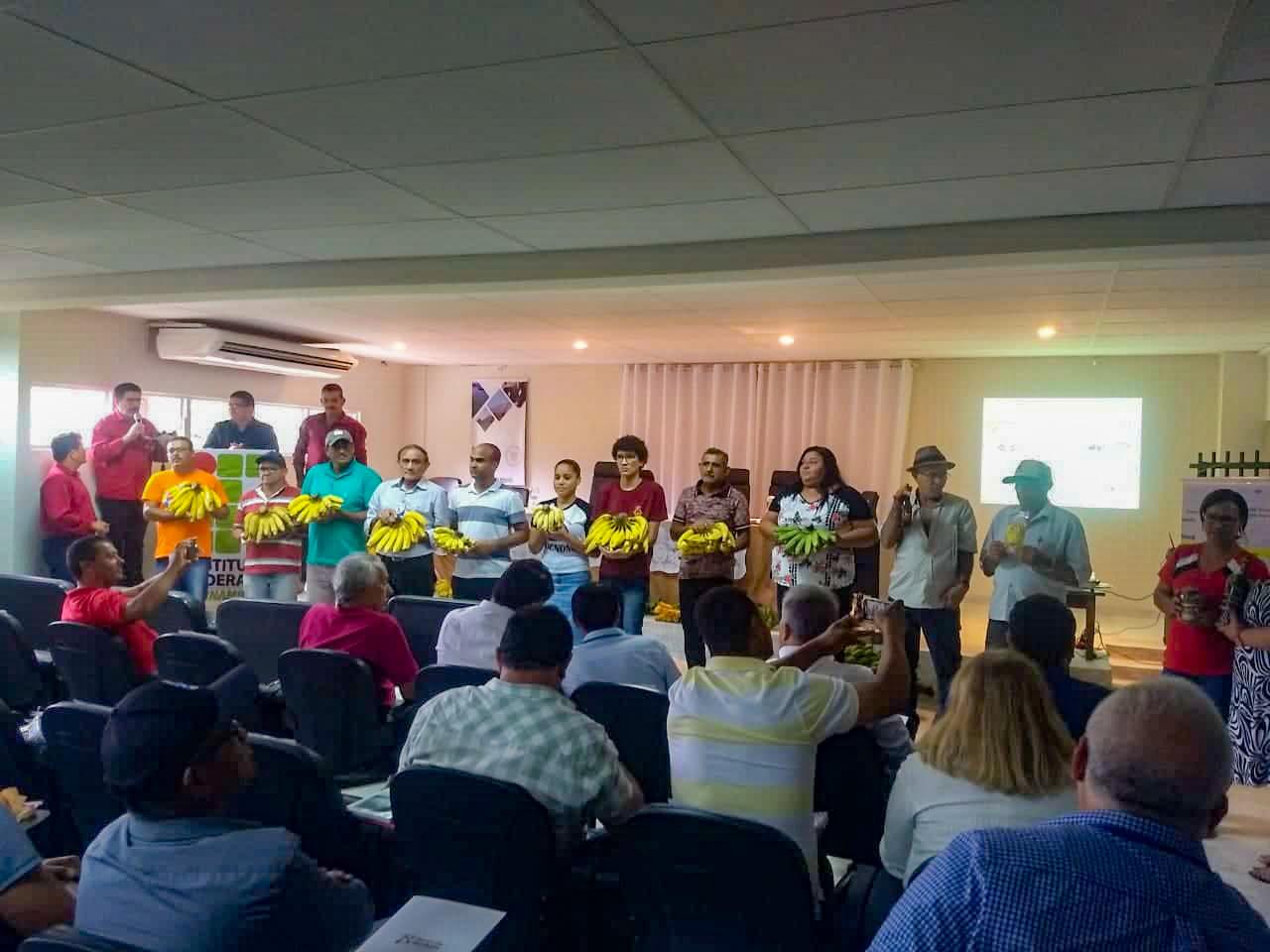 Eliseu Marinho - Produtores exibem bananas de qualidade durante lançamento