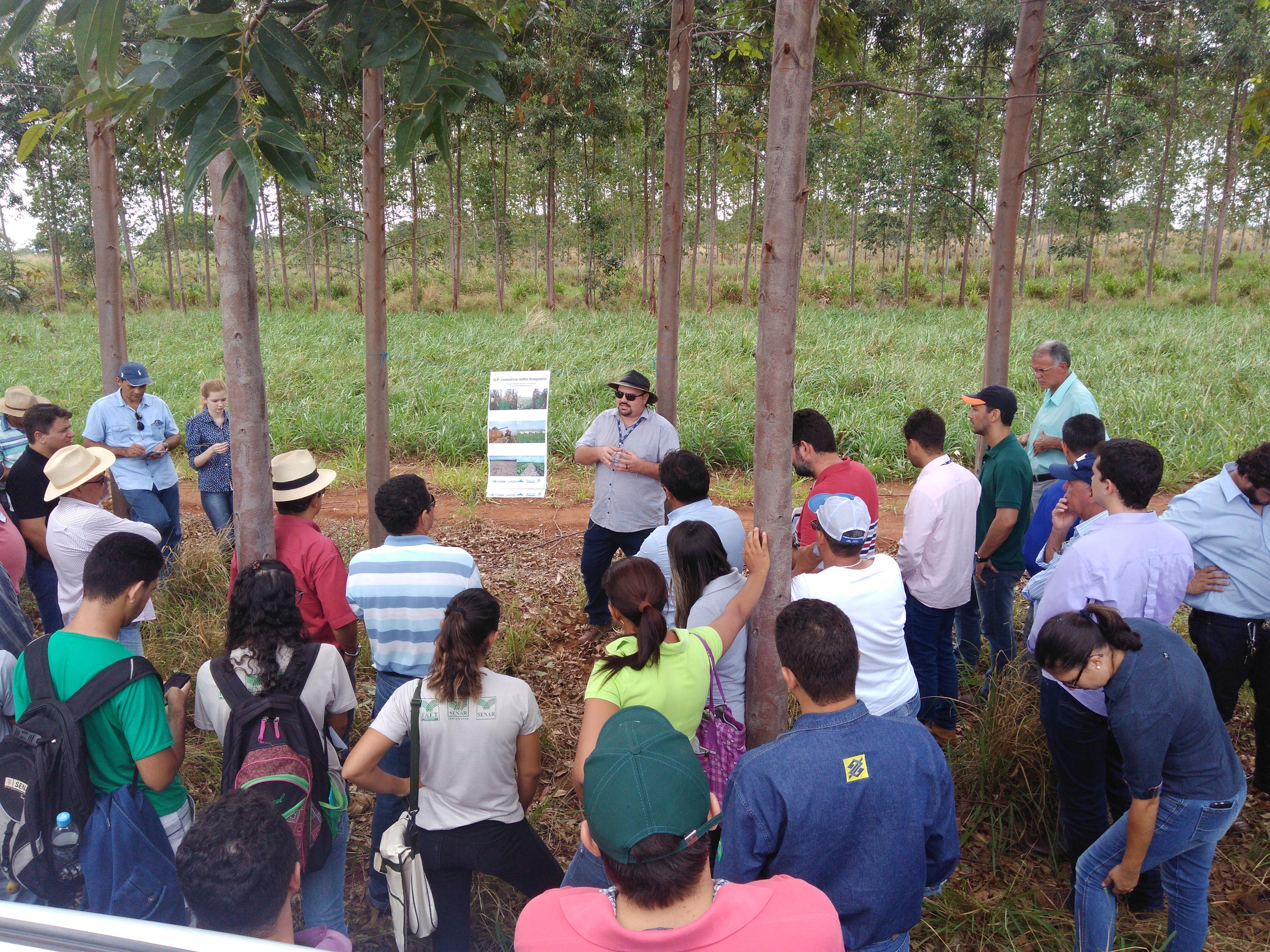 Clenio Araujo - Os módulos de capacitação incluíam práticas no campo