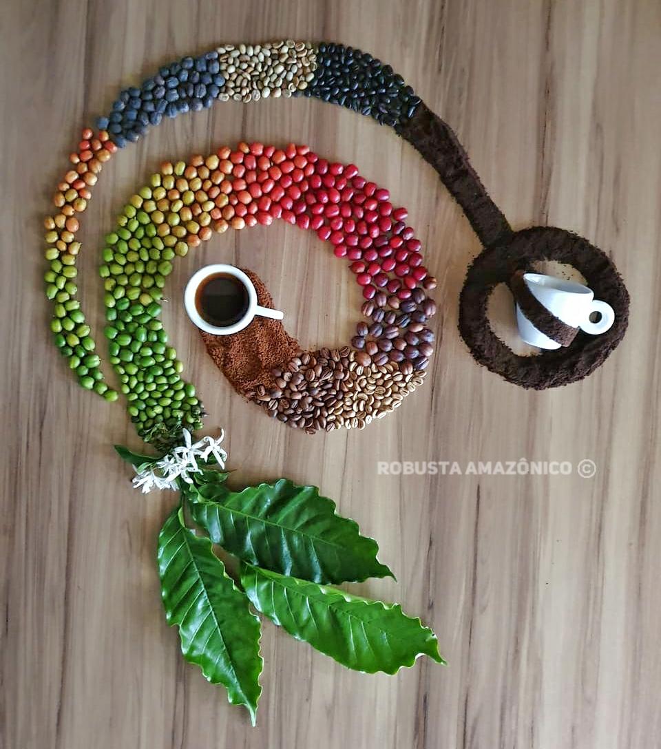 Enrique Alves - Respeite o ciclo natural do café para obter uma bebida com qualidade