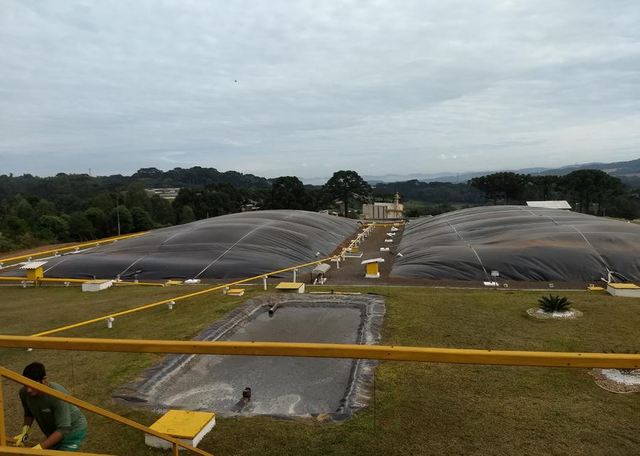 Divulgação Embrapa - O Sistrates é destinado ao tratamento dos dejetos suínos em grandes sistemas de produção