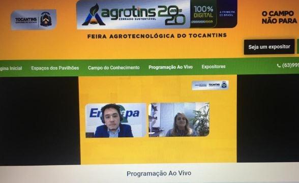 Internet - Para a especialista, avanço da Agricultura Digital pós-pandemia depende de políticas públicas.