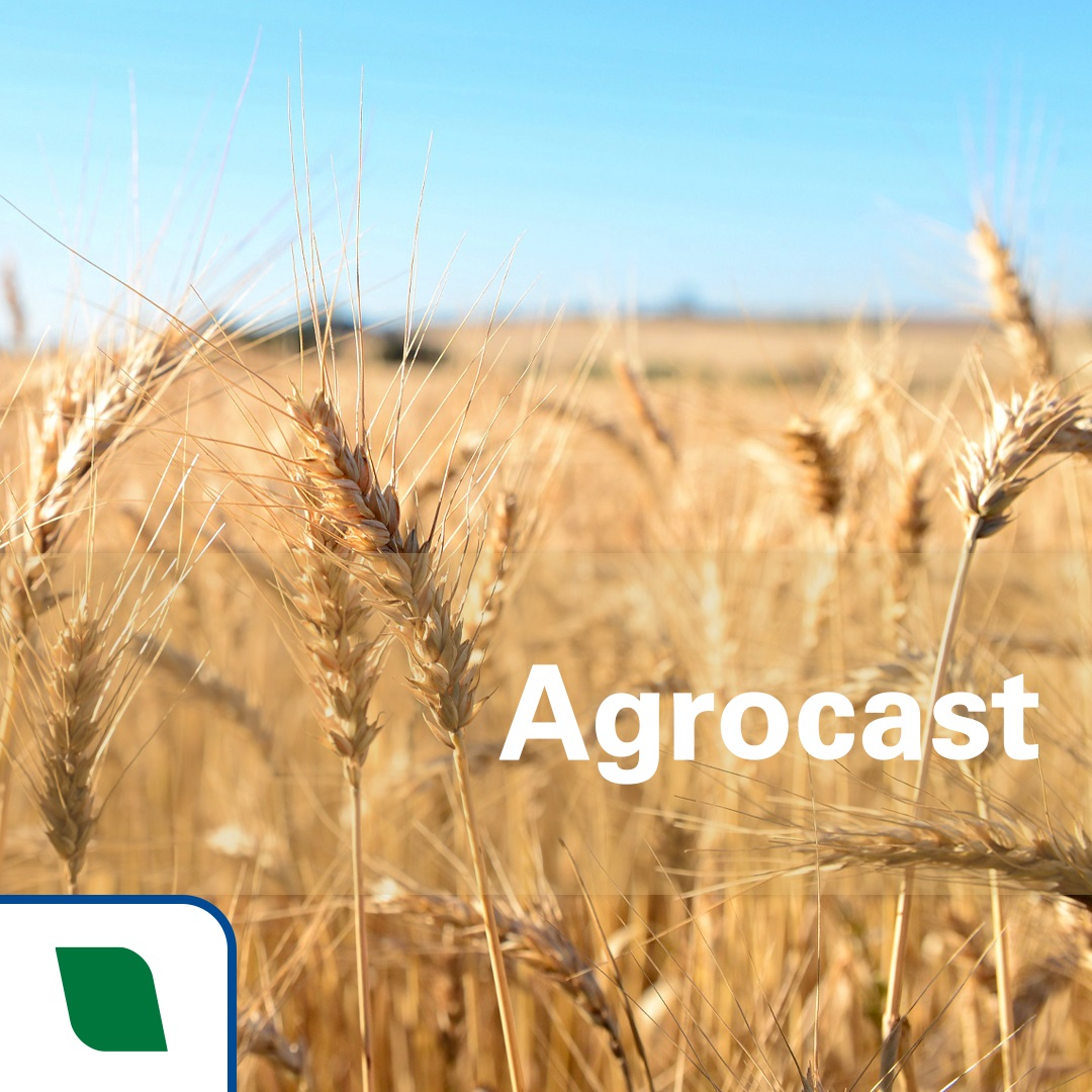 Agrocast Embrapa
