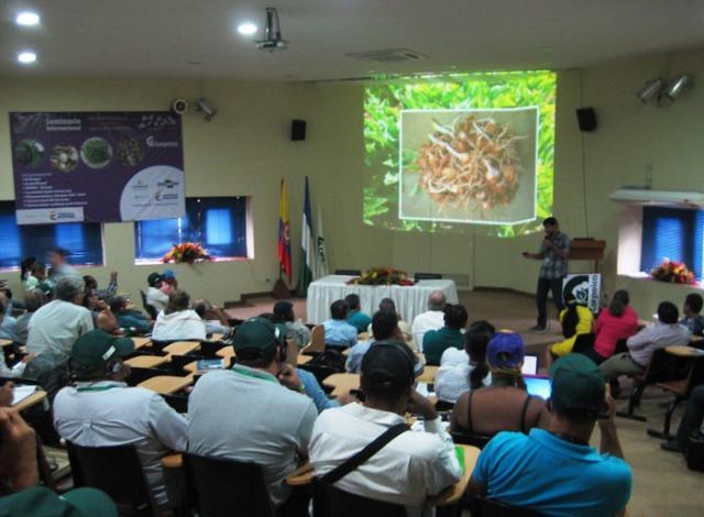 Rita Luengo - Pesquisador Nuno Madeira, que integrou o grupo de técnicos da Embrapa, apresenta palestra no seminário internacional