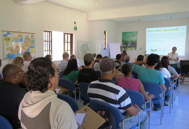 Viveiristas aprendem a produzir espécies para conservação e reflorestamento da Mata Atlântica no RJ
